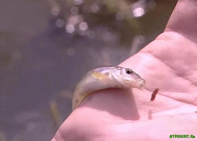 способы рыбалки на малых реках
