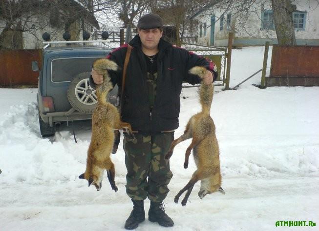 Увлекательная охота на лису
