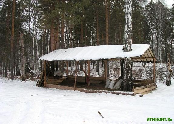 v-belarusi-pribyl-ot-oxotxozyajstvennoj-deyatelnosti-virosla-v-15-raz