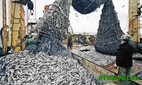 protivozakonnyj-vylov-ryby-v-buryatii-uvelichivaetsya