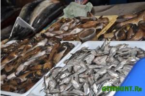 pryamo-iz-gryazi-prodayut-rybu-v-simferopole