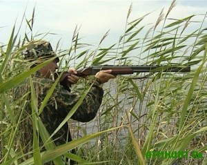 v-belarusi-budut-shag-za-shagom-gumanizirovat-pravila-oxoty