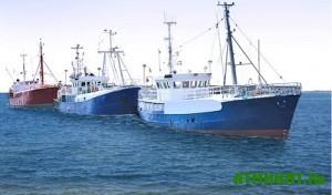 Dlja ukrainskih rybolovov otkryli evropejskij rynok