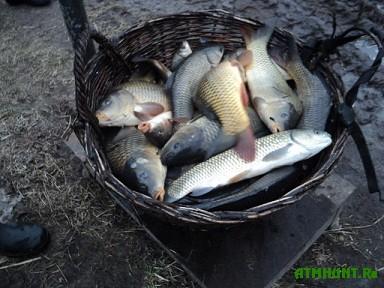 запрет на рыбалку на кубани 2017