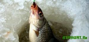 Pod Belevom proshli rybolovnye sorevnovanija