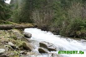 Ves' mir protiv zastrojki karpatskih rek malymi GJeS