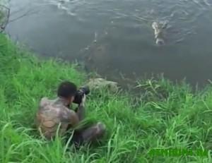 fotograf-chut-ne-stal-obedom-dlya-krokodila