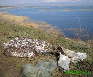 inspektory-rybooxrany-mariupolya-prodolzhayut-borbu-s-brakonerstvom