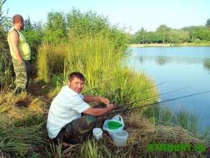 ogranicheniya-po-rybnoj-lovle-v-bassejne-azovskogo-morya