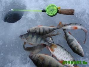 v-kazani-uspeshno-sostoyalsya-kubok-po-lovli-ryby-so-lda