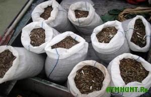 Krymskie brakon'ery izlovili 170 kilogramm ryby i krevetki