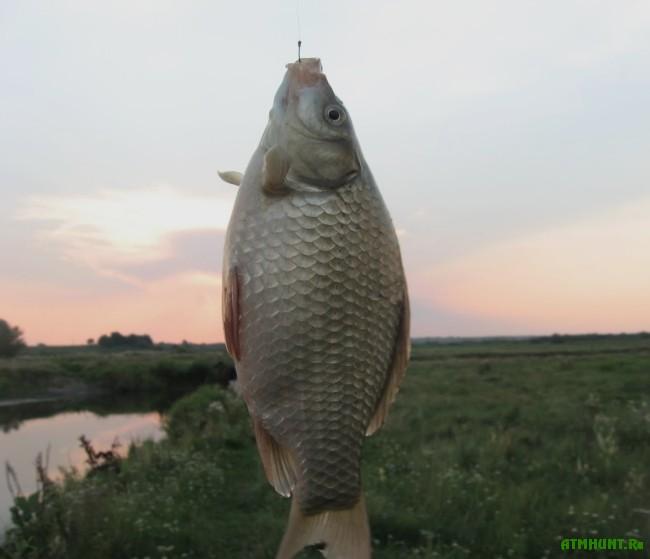 способы рыбалки весной