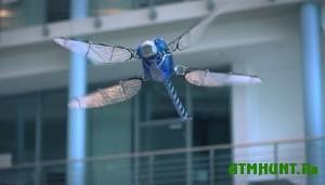 Roboty prihodjat na smenu dikim zhivotnym
