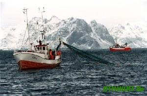 Ukraincam budut postavljat' tol'ko kachestvennuju norvezhskuju rybu