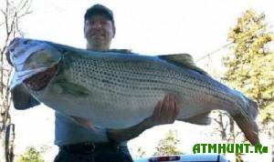 v-amerikanskogo-rybaka-xotyat-lishit-priza-v-1-mln-dol