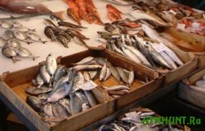 Na Zaporozhskih rynkah provedut rejdy po ochistke ot brakon'erskoj ryby
