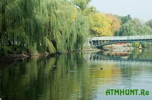 Sotni karasikov pogibli iz-za nechistot, zalivshih zaporozhskij prud v central'nom parke