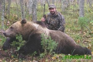 medvedS 10 avgusta na Kurilah i Sahaline otkryvaetsja ohota na medvedja