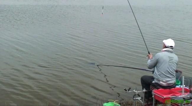 Снасти для ловли пеленгаса 31