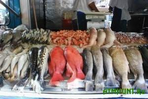 Ukraincy prakticheski ne edjat otechestvennuju rybu