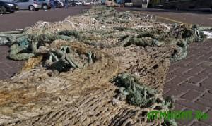 Ukrainskie brakon'ery za odin den' nalovili ryby na 23.5 tys. griven