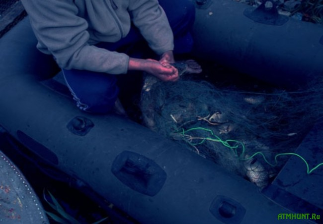 brakon'er nalovil ryby na 10 tysjach griven