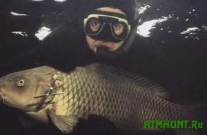 Brakon'er vylovil garpunom 79 rybin