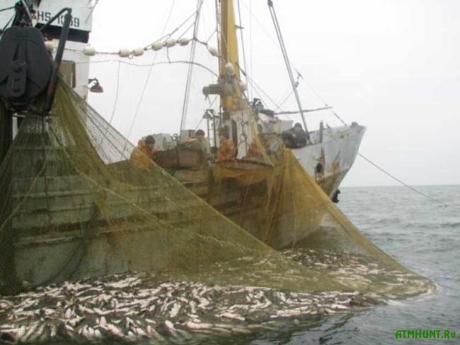 rybolovnye seti