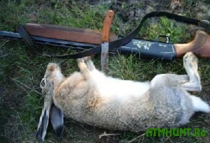 V ukrainskom lesu zaderzhali brakon'era s tremja zajcami-rusakami