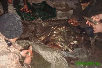 Zaporozhskie pravoohraniteli zaderzhali krupnejshih rybnyh brakon'erov