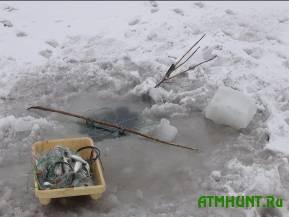 Doneckie pogranichniki zaderzhali nezakonnyh lovcov tarani i shemai
