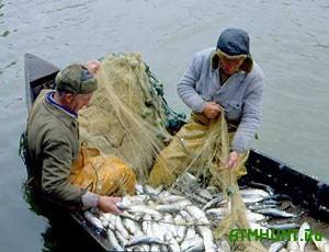 Na Hersonshhine rybinspektory otlichno srabotalis' s brakon'erami