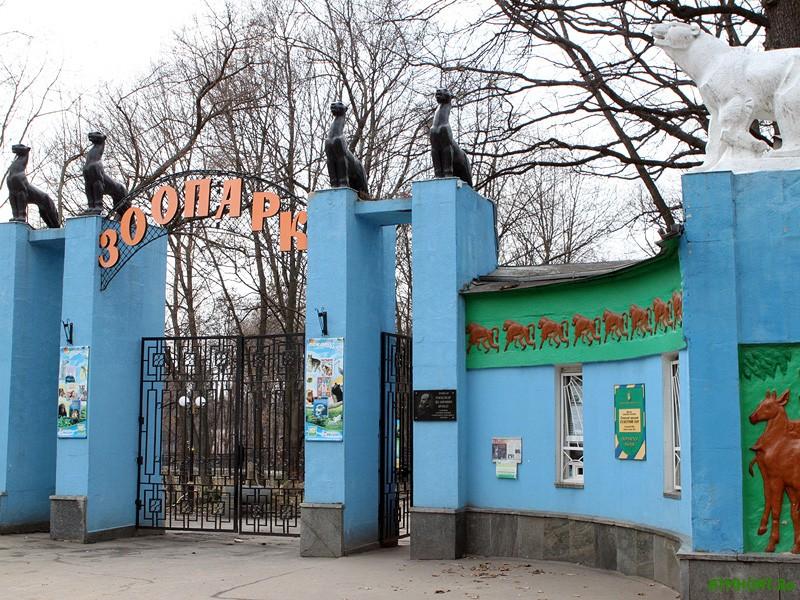 Har'kovchane spasli zhivotnyh iz zooparka ot golodnoj smerti obshhimi silami
