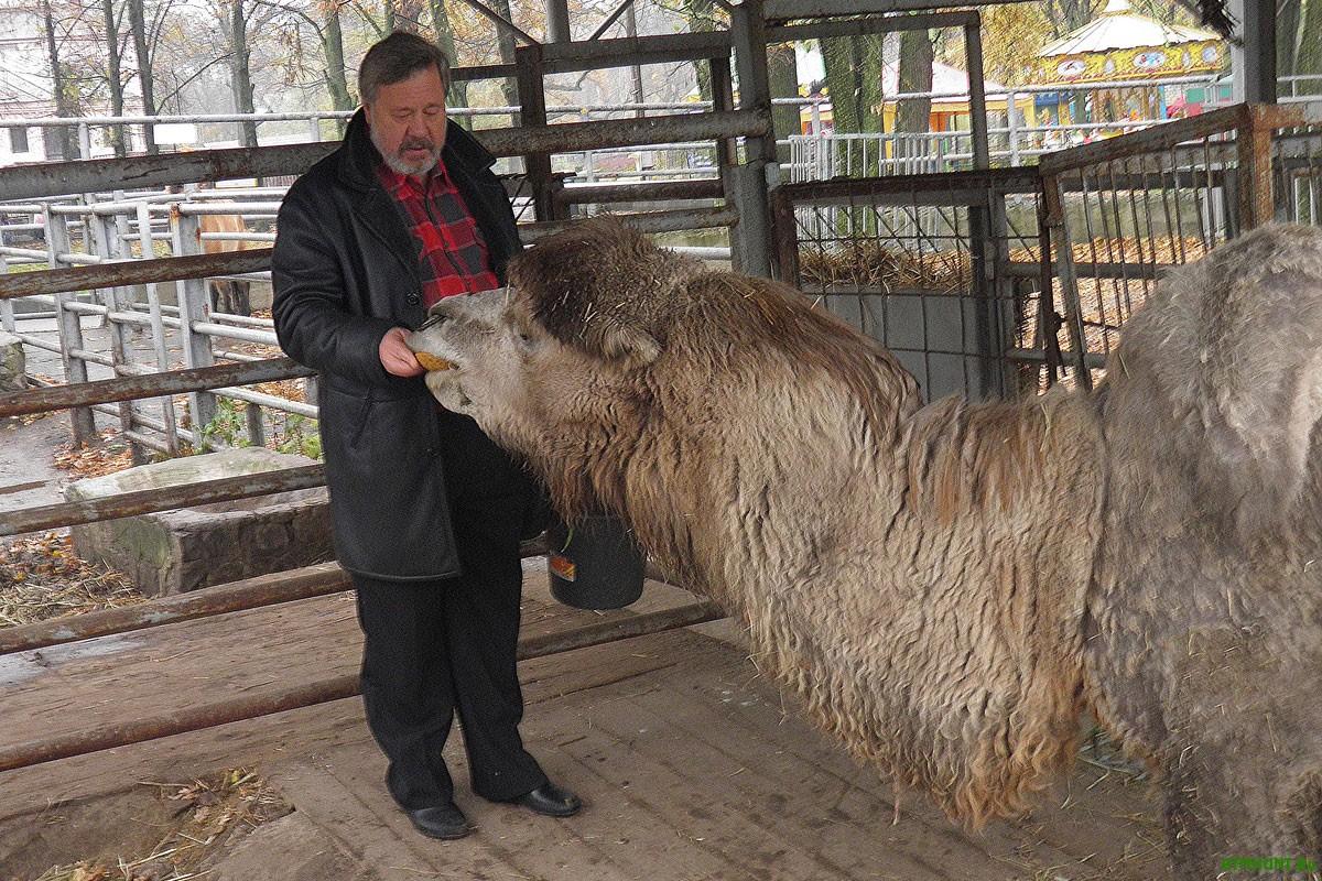 Zhivotnym Har'kovskogo zooparka grozit golodnaja smert'