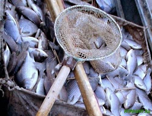 Prokuratura Odesshhiny trebuet vzyskat' s dvuh rybakov 758 tys. griven