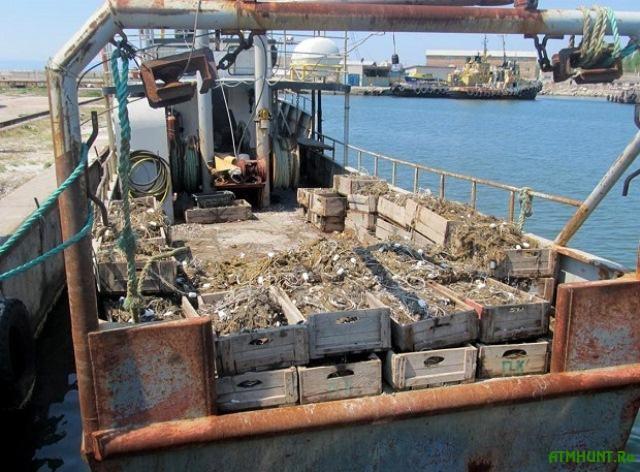 Na Hersonshhine brakon'erov-rybolovov pereputali s zahvatchikami