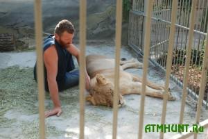 V Zaporozhskoj oblasti lechat tigrov i medvedej sbezhavshego chinovnika