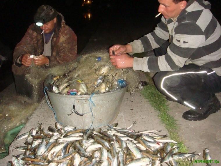 Za odnu noch' hersonskie brakon'ery nalovili ryby na 200 tys. griven