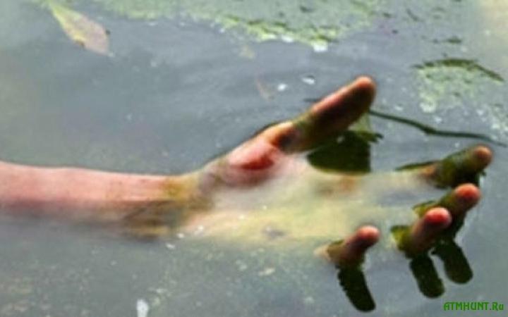 смерть рыбаков в Закарпатье