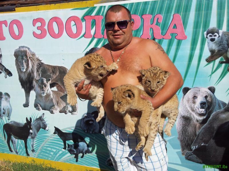 Iz ohvachennogo boevymi dejstvijami Donecka vyvezli novorozhdennyh medvezhat