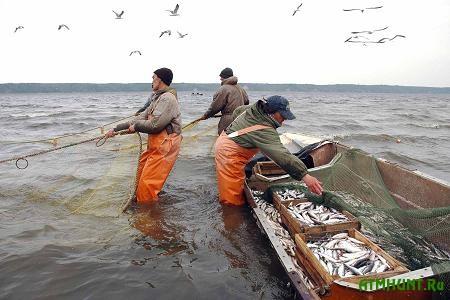 Polovina rybnogo promysla Ukrainy nahoditsja  teni
