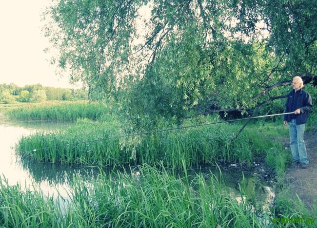 Ловля линя на поплавочную удочку