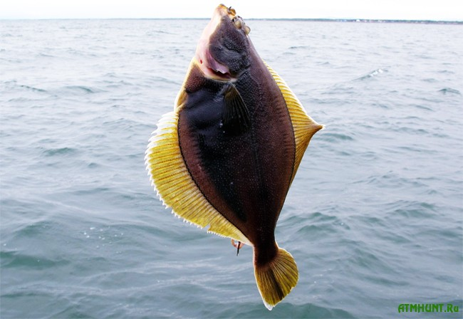 способы рыбалки на море с берега