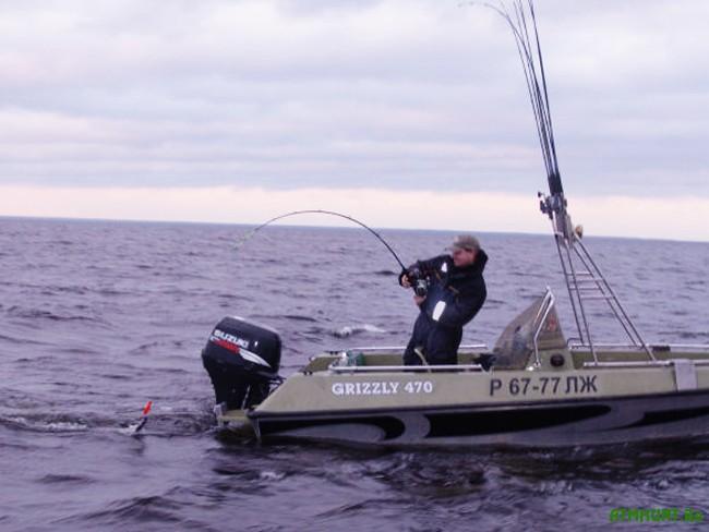 рыбалка троллингом на лодке скорость