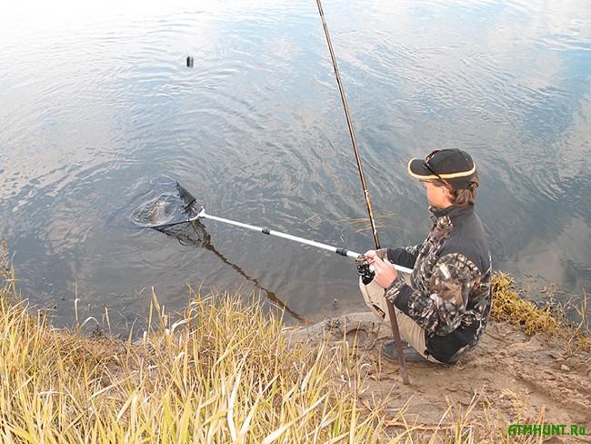 ловля голавля на куме