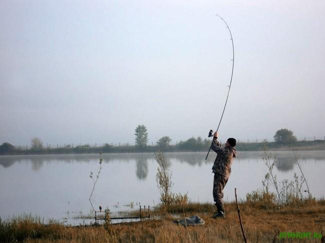 Снасти для рыбы амура