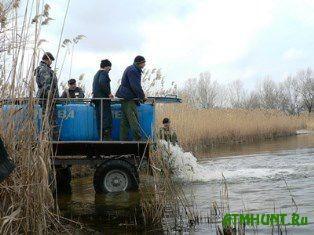 Na Hersonshhine v Dnepr vypustjat 2,25 mln. mal'kov karpa i tolstolobika