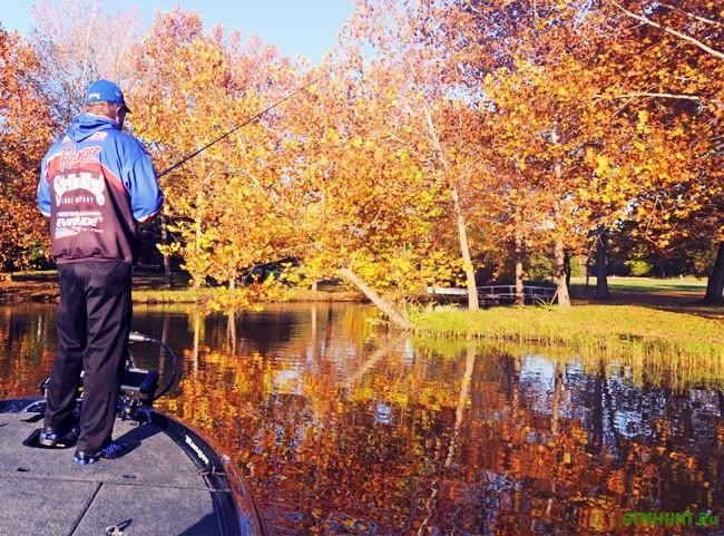 Осенняя ловля на поплавочную удочку: наживки и прикормка