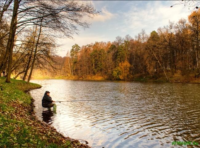 Осенняя ловля на поплавочную удочку: выбор снасти