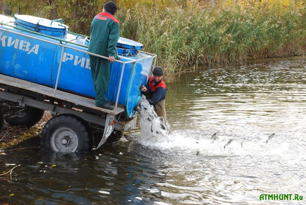Pod Zaporozh'em v Dnepr vypustili 5 tonn mal'kov ryby